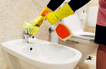 Maid cleans the bidet is cleaning