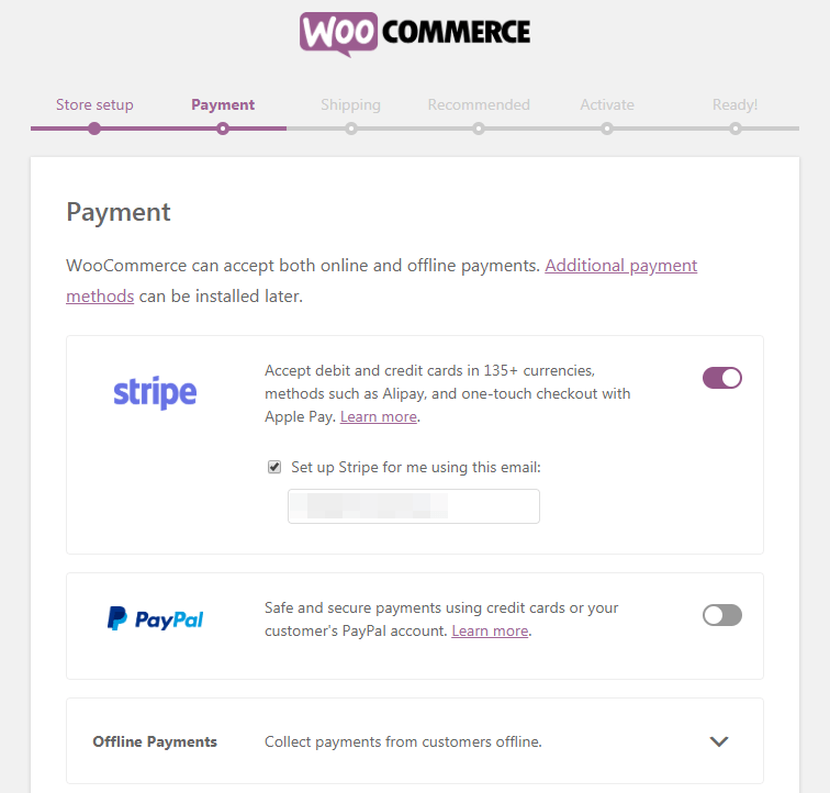 WooCommerce Setup Wizard, Payment