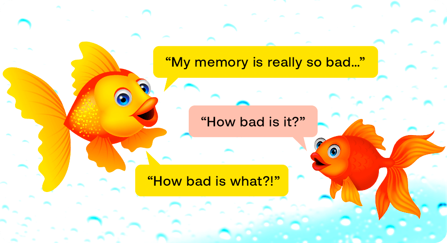 goldfishes have got dull memories