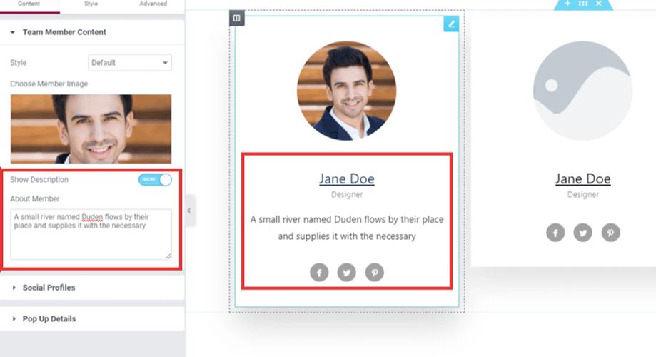 how to add team member description in wordpress